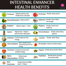 Intestinal Enhancer (120 Capsules)