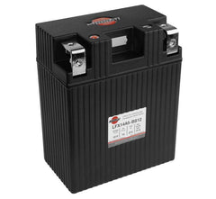 Shorai LFX Standard Batteries for ATV LFX14A5-BS12