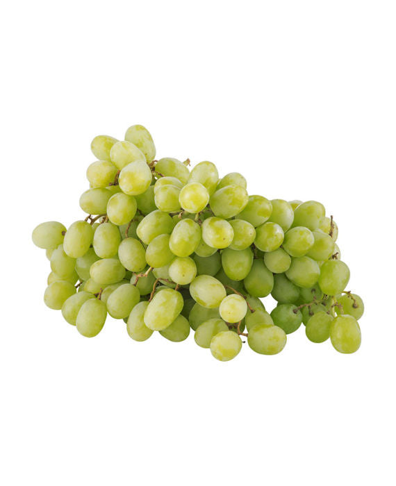 Green Seedless Grapes   1.5 lb