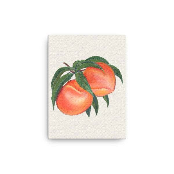 Peaches Chalk Painting - Liz Lauter Designs