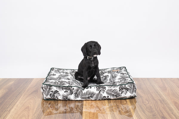 Classic Cushion Bed - Black Tropical Leaves Print