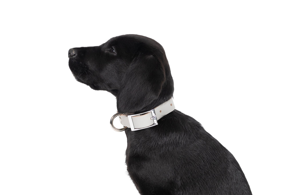 Genuine Leather Collar - Grey