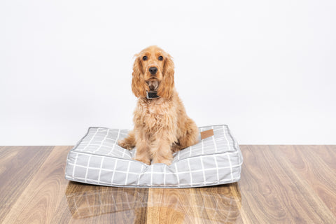 Classic Cushion Bed - Grey Check Print