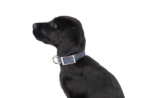 Genuine Leather Collar - Navy