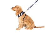 Neoprene Harness - Navy Hamptons Stripe Print