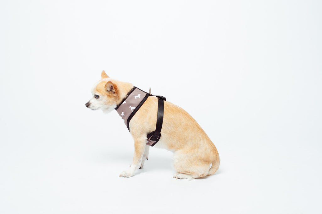 Neoprene Harness - Designer Dog Print - Mocca