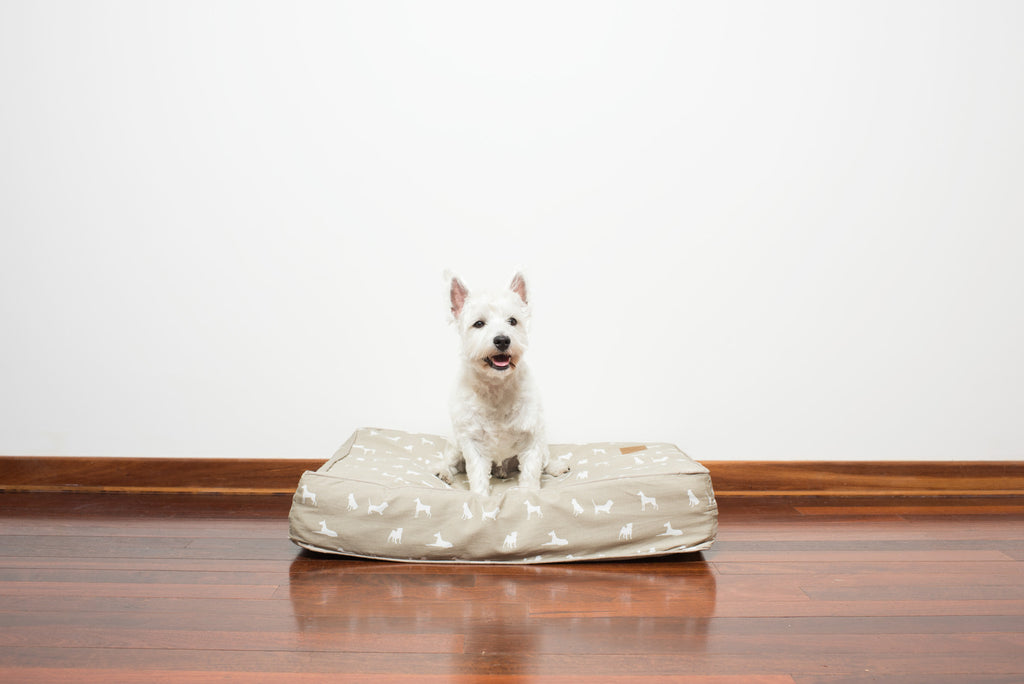 Classic Cushion Bed - Designer Dog Print - Oatmeal