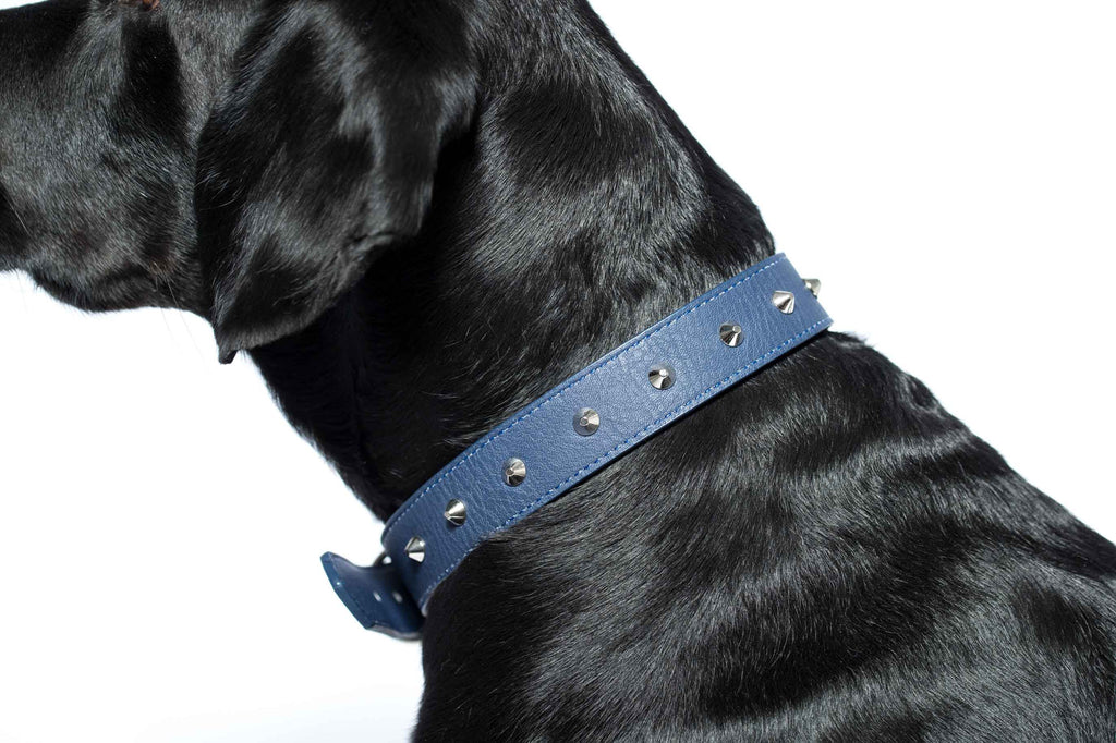 Studded Collar - Imitation Leather - Blue