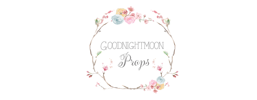 Goodnightmoonprops