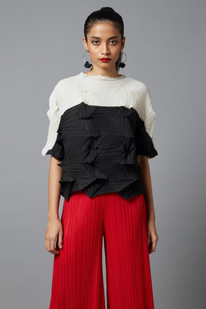 Scarlet Sage Top Pleated Tops
