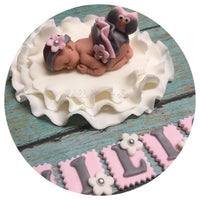 OWL BABY SHOWER Fondant Cake Tropper Pink Gray Ruffle Skirt woodland nursery invitation theme Fondant Baby Cake Topper