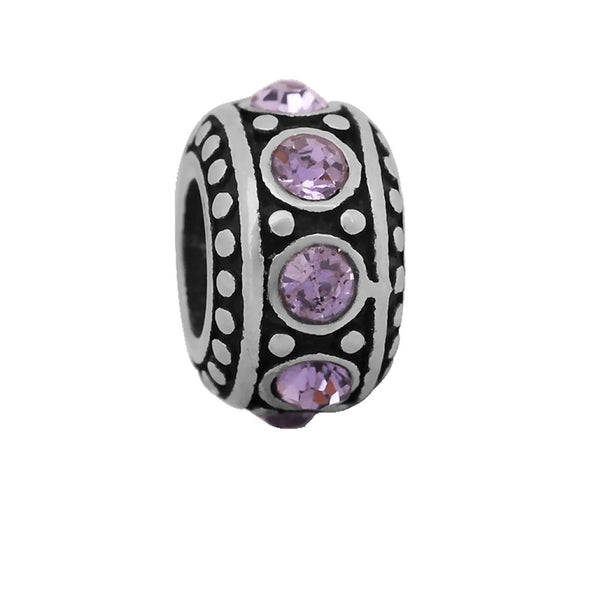 Sexy Sparkles Stainless Steel February Birthstone Spacer Round Charm Bead