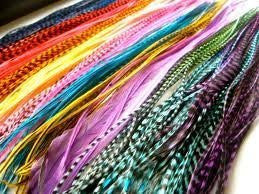 Feather Hair Extension 20 Individual Vivid Grizzly and Solid  Block Mix 7-11 in Length Plus 10 Silicone Crimp Beads - Sexy Sparkles Fashion Jewelry - 1