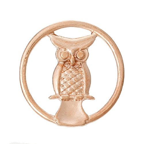 Owl Rose Gold Tone Floating Charms Dish Plate for Glass Locket Pendants and Floating