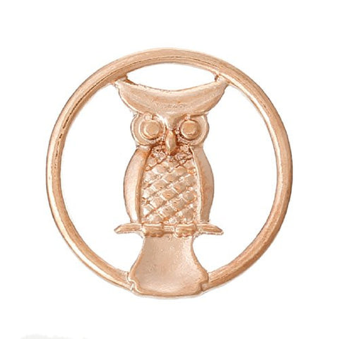 Owl Rose Gold Tone Floating Charms Dish Plate for Glass Locket Pendants and Floating - Sexy Sparkles Fashion Jewelry - 1