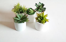 Cement Planter As Flower Pot (Set Of 2) | SpreeIndia.com - India's First Website That Discovers Eco-Friendly Products