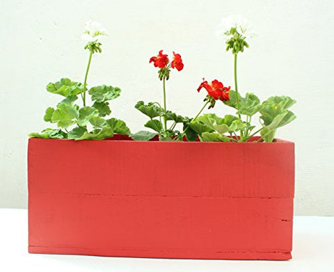 Green Gardenia Table Top Wooden Box Planter-Red | SpreeIndia.com - India's First Website That Discovers Eco-Friendly Products