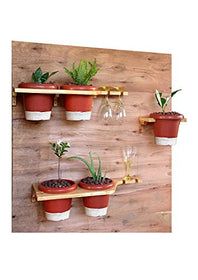 Decorative Wooden Shelf Planters (With 5 Plants)