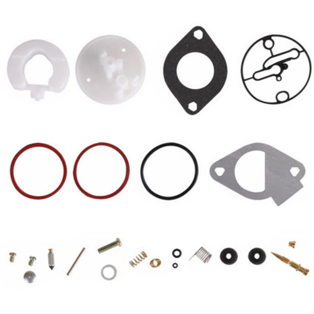 Towswell Carburetor Repair Kit Tools for Briggs Stratton Master Overhaul Nikki Carbs