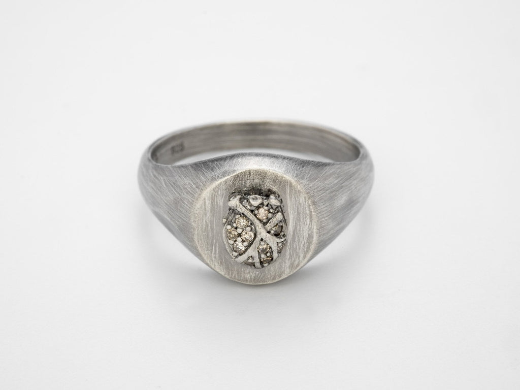 The Seeker Ring