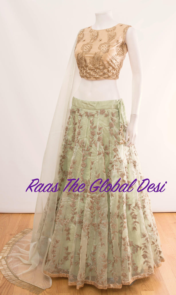 CC1903-CHANIYA CHOLI-Raas The Global Desi-[wedding_lehengas]-[indian_dresses]-[gown_dress]-[indian_clothes]-[chaniya_cholis]