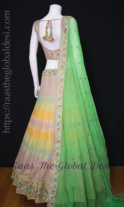 CC2948-Chaniya choli-Raas The Global Desi-[chaniya_choli]-[lehenga_choli]-[Indian_clothing_online_USA]-Raas The Global Desi