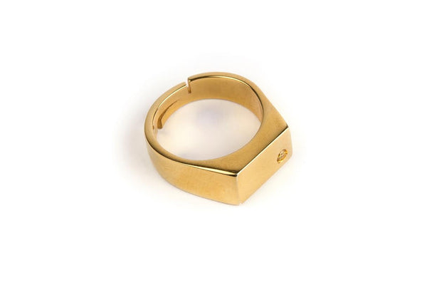Delian Rectangular Ring with Different stones (Silver or Gold)