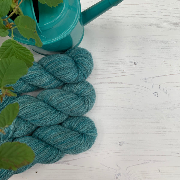 Hampshire DK - Dragonfly