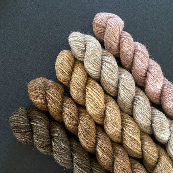Hampshire 4ply Mini Skeins - My View Point