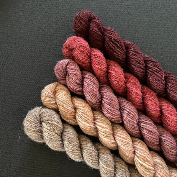 Hampshire 4ply Mini Skeins - Evening View