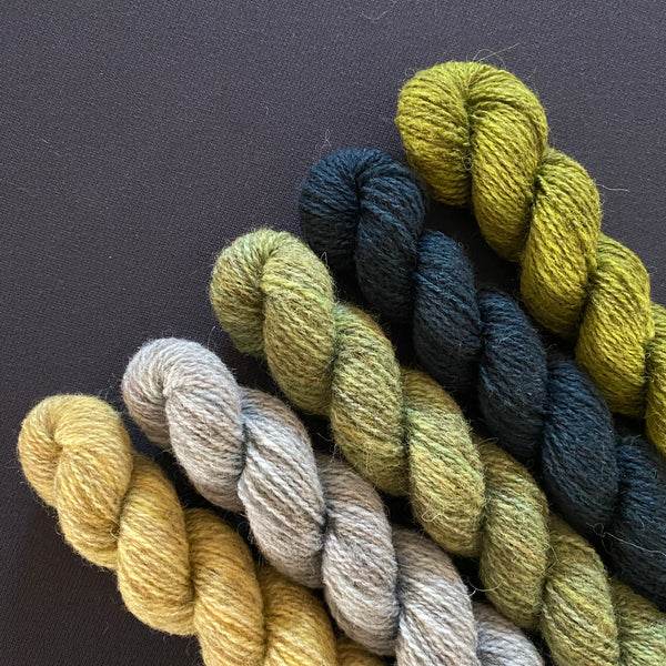 Hampshire 4ply Mini Skeins -The Forester