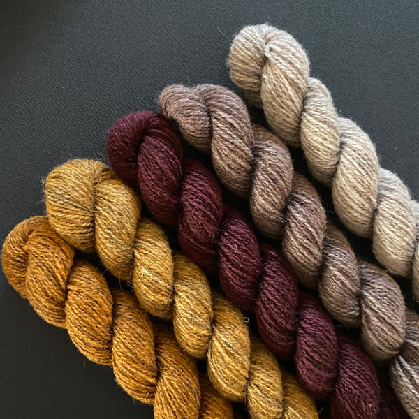 Hampshire 4ply Mini Skeins - Reasonable Excuse