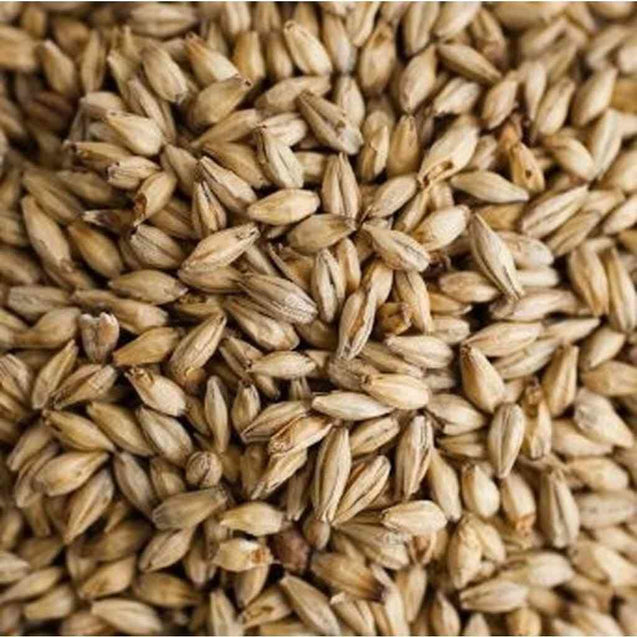 Best Malz Chit Malt 1.5-2.3L 10 Lb Grain