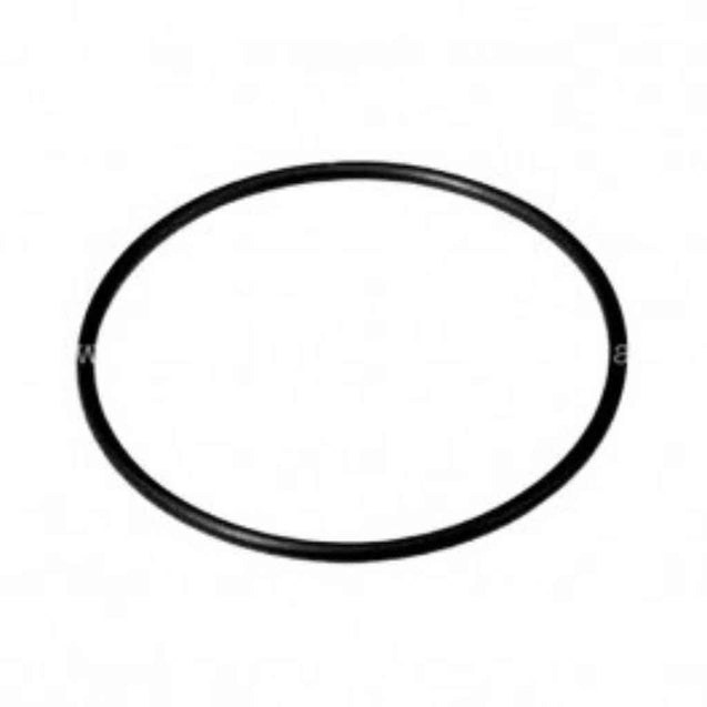 Fermonster O-Ring For Lid Pet Carboys