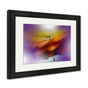Framed Print Abstract Macro Photo With Dandelion And Water Drops Artistic For Desktop Framed Print