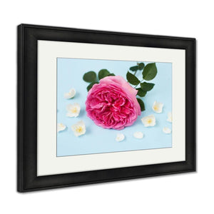 Framed Print Princess Alexandra Of Kent Rose Jasmine Flowers And Petals On Blue Backgroung Framed Print