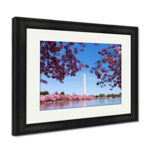 Framed Print Washington Dc Cherry Blossom Framed Print