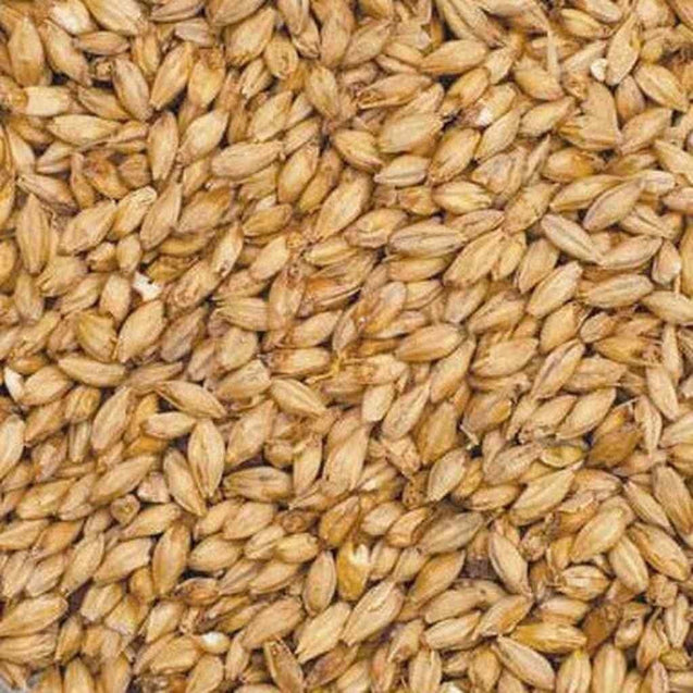 Gambrinus Pale Ale Malt Grain