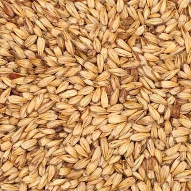 Great Western Munich Malt 10L 10 Lb Grain