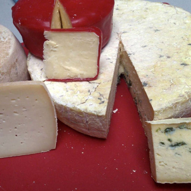 Hard Cheese Cultures Sample Pack Cheese Making