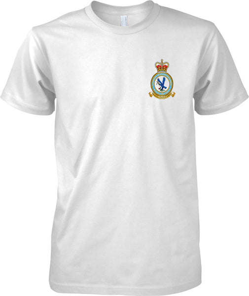 Catering Trg Squadron - RAF Royal Air Force Official T-Shirt Colour