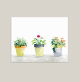 """Planted Trio"" Potted Plants Art Print on Retired Paper Stock"