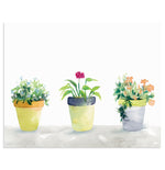"""Planted Trio"" Flower Pots Art Print"