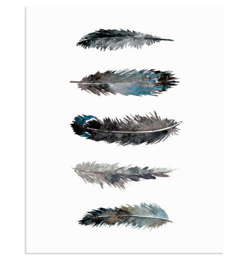 """FEATHER STUDY I"" Feathers Art Print"