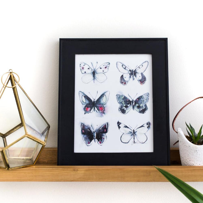 nature themed art butterfly collection