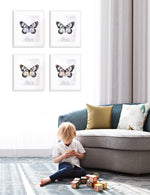 """Wings"" Gallery Wall Set of Four"