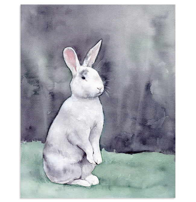 """Bella"" White Rabbit Art Print"
