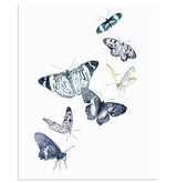 """Windswept"" Butterfly Art Print"