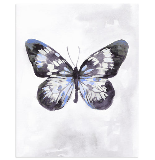 """Periwinkle Wings"" Butterfly Art Print"