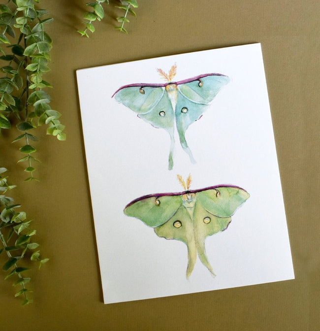 """Luna Morning"" Moth Art Print"